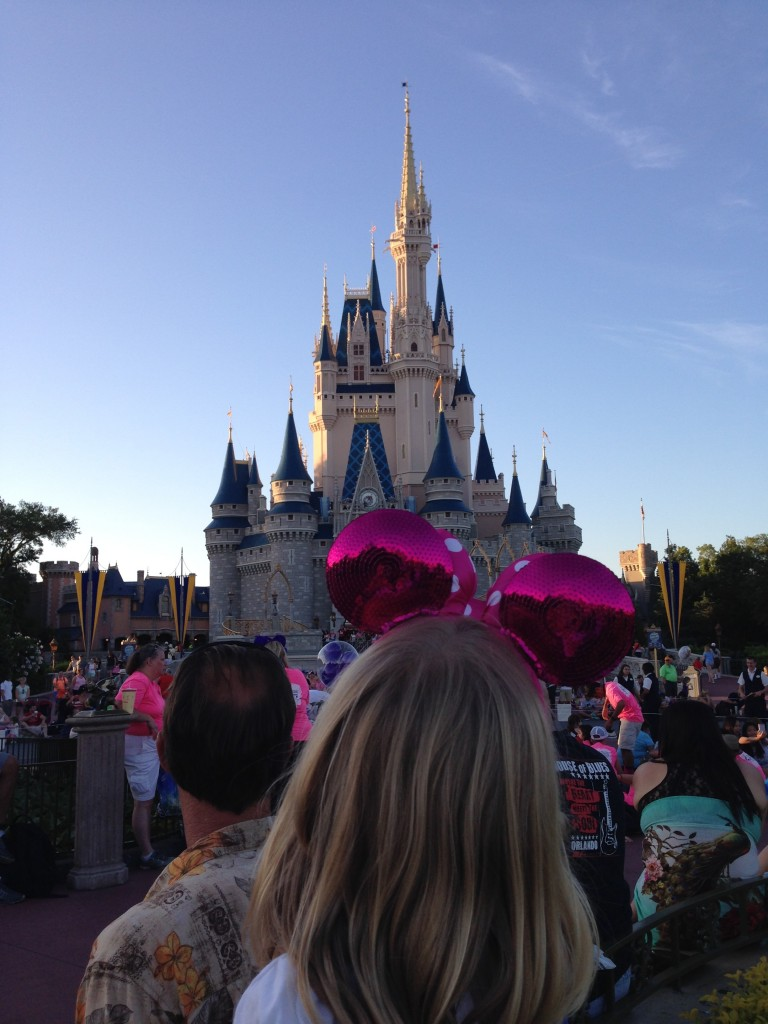 Cinderellas Castle disney
